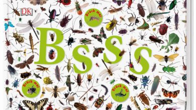 Photo of Bsss – Die ganze Welt der Insekten. Mit Sound-Chips im Cover